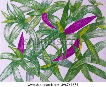 Pastel pencils drawing green and violet leaves, hand-drawn leaf pattern, leaf drawing by pastels in green and lily colors, tropical garden drawing, succulent drawing, hand-drawn tropical flora - stock photo