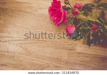 pastel red rose blossoms and buds close up - natural wood background