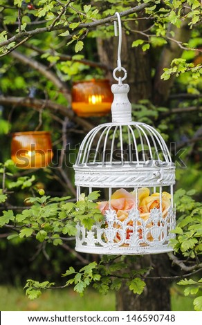Pastel roses in white vintage birdcage hanging on branch. Garden decor, summer party. Small lanterns hanging on tree in the background. - stock photo