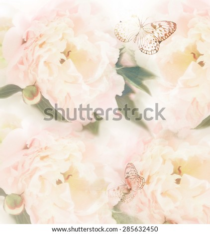 Pastel roses on canvas texture with butterfly  - stock photo
