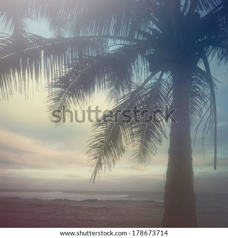 Pastel scene from Maui Hawaii at Hookipa beach. - stock photo