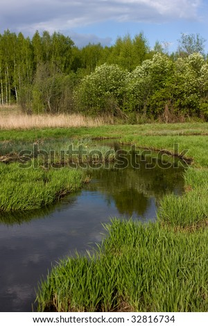 pastoral view of russian countryside: river, green grass and forest - stock photo