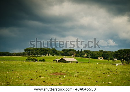 Pasture and barn from National Park Brijuni, in Croatia. Natural Zoo on the island of Great Brijuni