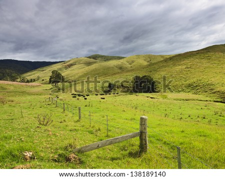 pasture green remote agricultural estate cattle growing behind fence grassy fields and meadows - stock photo