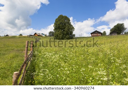 Pasture near the village Markovskaya, Verhovazhskogo district, Vologda region, Russia - stock photo