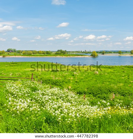Pasture on the Banks of the Rhine in Holland - stock photo