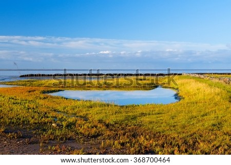 Pastures on Mando island flooded with sea water - stock photo