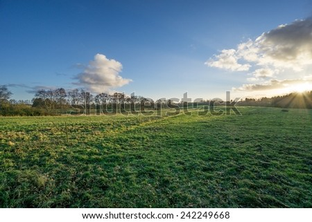 Pastures with electric fence and dirt road in back light - stock photo