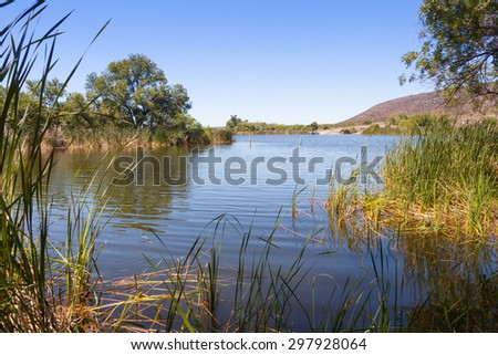 Patagonia Lake State Park and wetlands area in Arizona - stock photo
