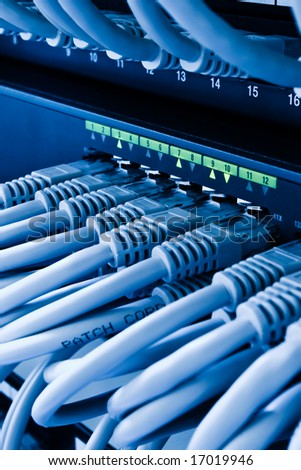 patch cords and network switch - stock photo
