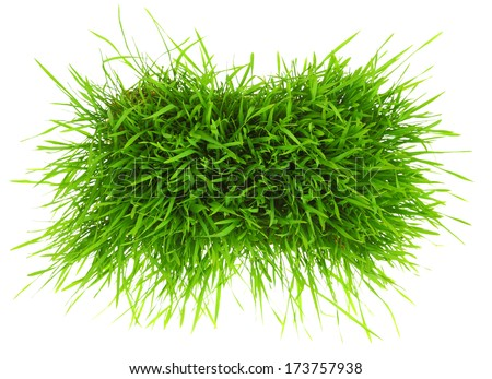Patch of green grass isolated on white background  - stock photo