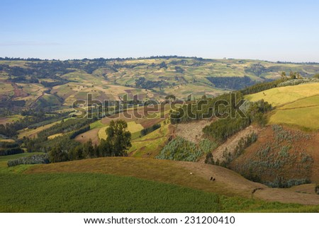 patchwork of farms in the Ethiopian highlands - stock photo