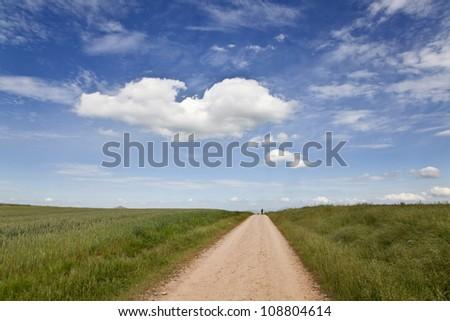 Path along the wheat fields near Burgos, Spain - stock photo