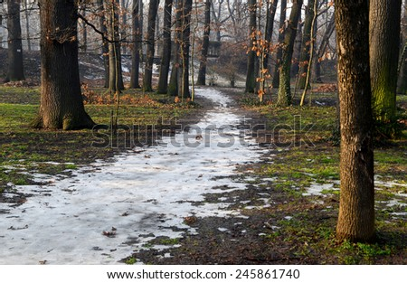 path covered with snow in a forest in spring - stock photo