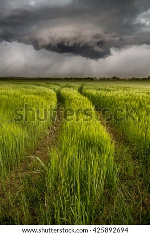 Path from the cereal field to the storm