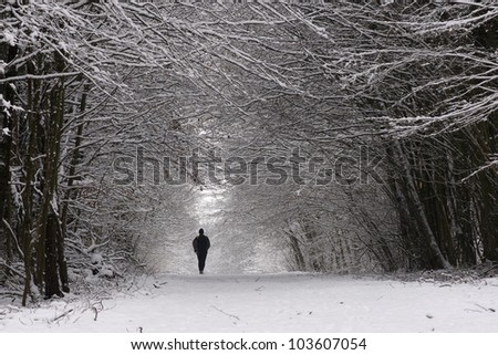 Path in a thick forest in winter- trees covered with snow and a man walking - stock photo