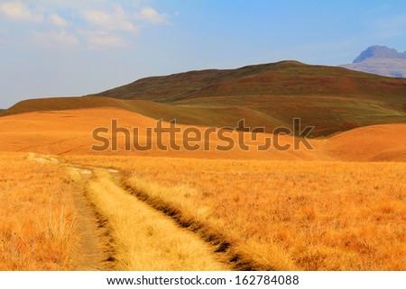 path in Drakensberg Dragon mountains - landscape - stock photo