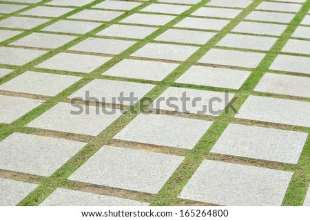 path in garden, perspective view. - stock photo