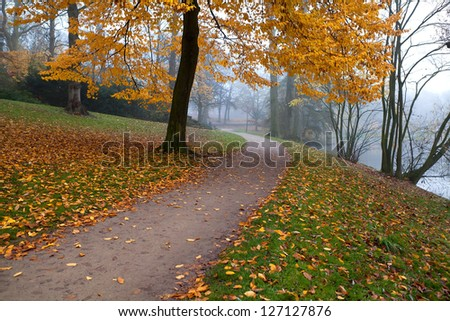 path in misty autumn park covered with yellow leaves