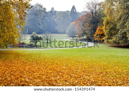 Path in the autumn park. Autumn Landscape. Park in Autumn. Forest  in Autumn.  - stock photo