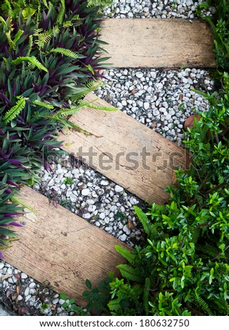 path in the garden - stock photo
