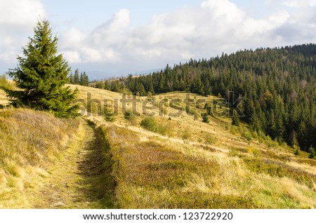path in the mountains, Beskid - mountains in south western Poland