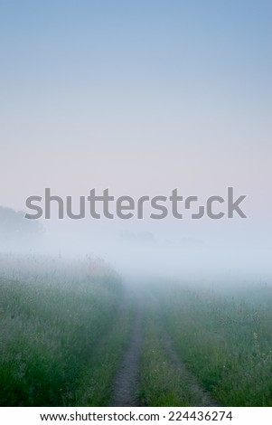 Path into heavy fog background - stock photo