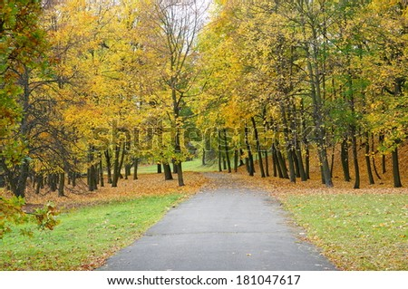 Path leading through a park with many trees
