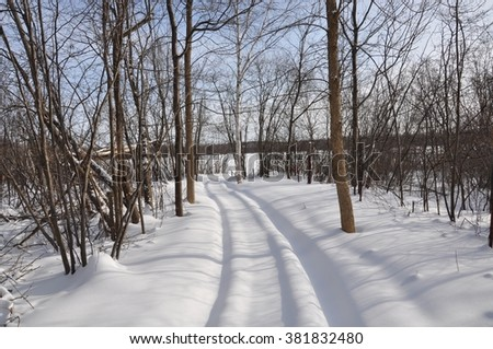 Path of snowmobile in the woods - stock photo