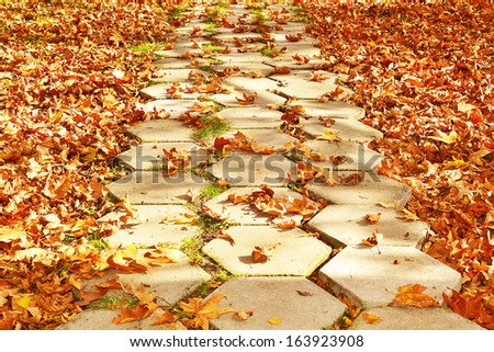 path of stone slabs of autumn leaves - stock photo