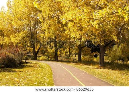 Path through a city park with vibrant autumn foliage - stock photo