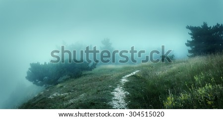 Path through a mysterious dark old forest in fog on the top of the mountain. Summer morning in Crimea. Magical atmosphere. Fairytale - stock photo