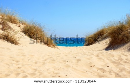 path through the dunes leads  towards the ocean - stock photo