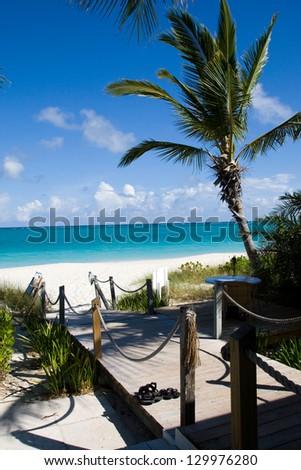 Path to a Caribbean Beach - stock photo