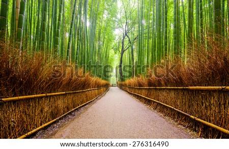 Path to bamboo forest, Arashiyama, Kyoto, Japan - stock photo