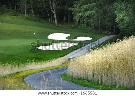 path to gold course along ornamental grass
