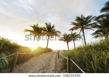 Path to the Beach in Miami - stock photo