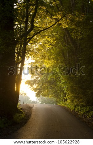 Path to the Light - stock photo