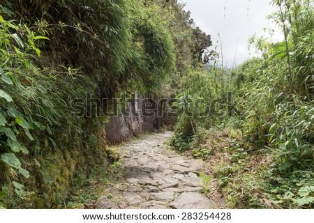 Path walk on The Inca Trail, Machu Picchu, Peru - stock photo