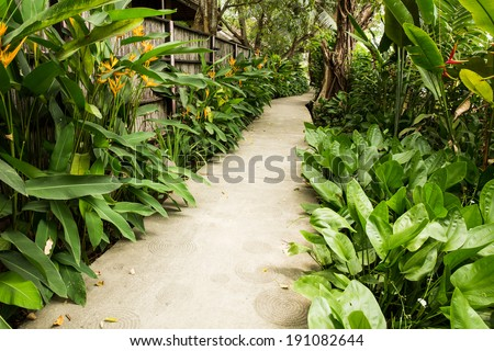 Path way in garden - stock photo