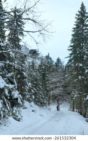 Pathway around Eibsee lake and children for  walk . Winter view. Bavaria, Germany.