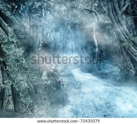 Pathway in a mystic forest - stock photo