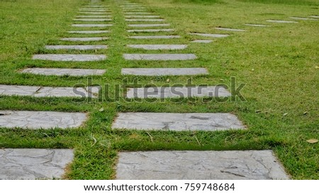 Pathway in garden, green lawns with bricks pathways.