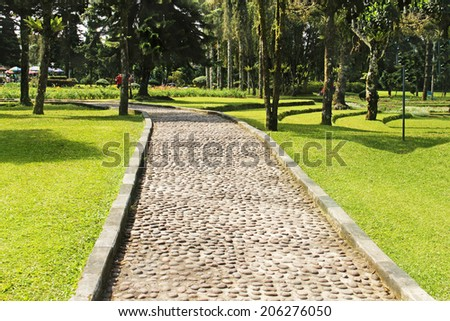 pathway in the botanical garden - stock photo