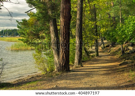 lake trees stock images royaltyfree images amp vectors