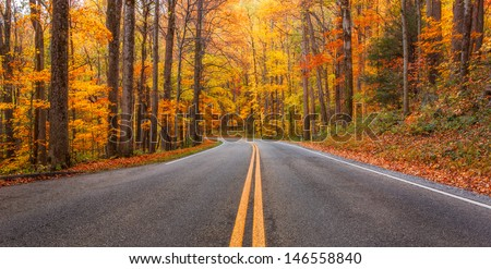Pathway to colors, falls colors in the Smokey mountains - stock photo