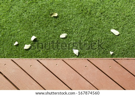 Patio and grass with fall leaves