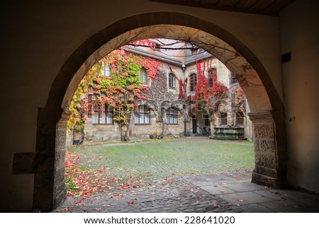 Patio with colorful vines and autumn leaves in Germany - stock photo