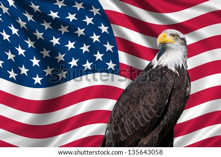 Patriotic symbol showing the American flag with a bald eagle - stock photo