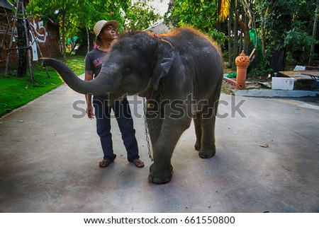 PATTAYA, THAILAND - MARCH 11, 2017: A little elephant with unidentified man welcomes everybody to Chonburi, Thailand.